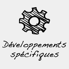 developpement specifique automobile